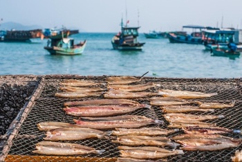 Du lịch Nam Du - Các loại cá được làm thành khô
